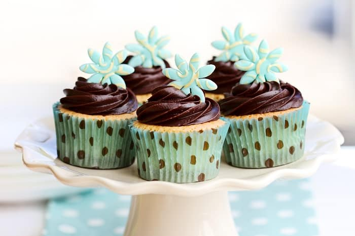 Facts about Martha Stewart Chocolate Frosting