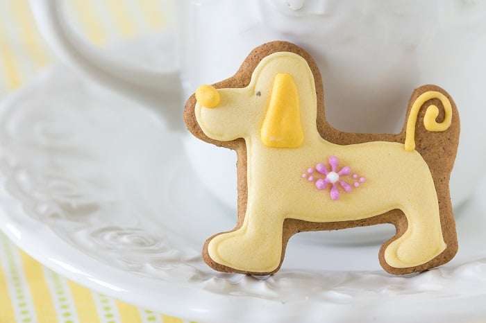 Icing For Dog Treats: Step By Step Instructions Tips and Tricks