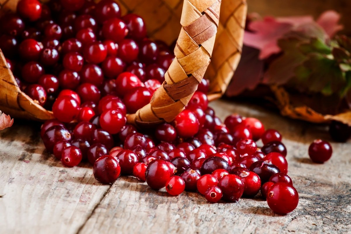 How to Cook Cranberries and Why You Should